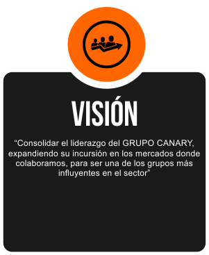 Vision_002